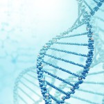 Newly identified genes linked to keloid scars